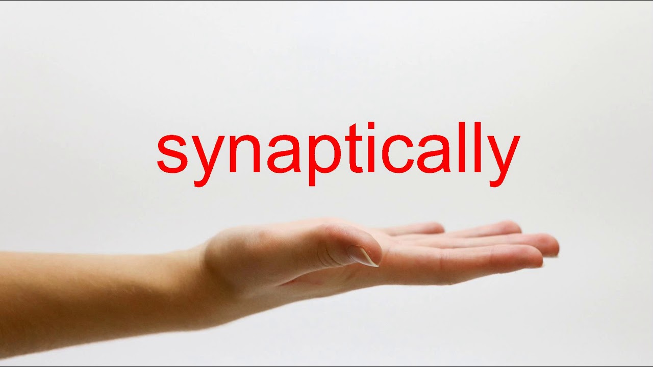 How to Pronounce synaptically - American English image