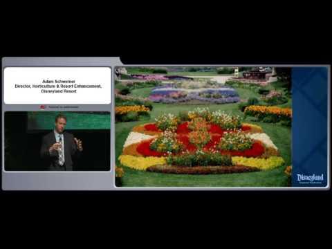 Grow Something Magical: Adam Schwerner