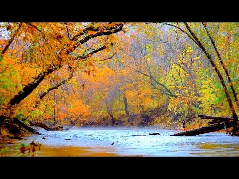 4 hours of peaceful, relaxing, nature instrumental music by Tim Janis