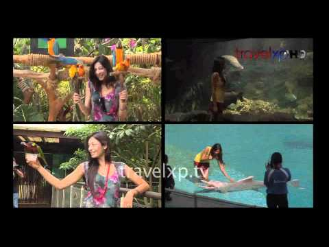 Sukhmani Sadana, Anchor/ Host for a Travel Show on a HD Channel 'Travel XP'. Promo for Singapore