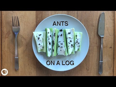 The Case For Eating Bugs