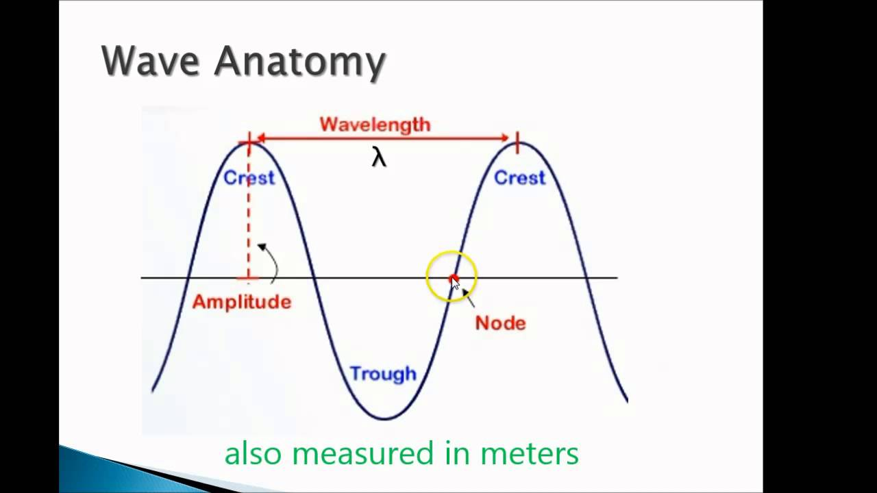 Waves Review 1: Anatomy of the Transverse Wave - YouTube