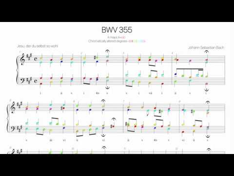 Bach Chorale BWV 355 Harmonic analysis with colored notes -Jesu, der du selbst so wohl-