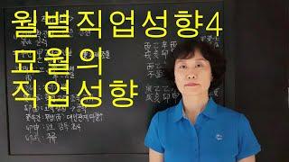 사주명리학 [월별직업성향4 묘월의직업성향] 서울사주이모