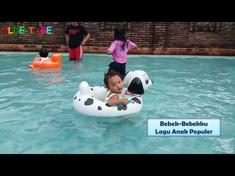 Bebek Bebekku Lagu Anak Populer Baby Bath Swimming Pool Youtube