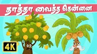 தாத்தா வைத்த தென்னை (Thatha Vaitha Thennai) | Chellame Chellam | Tamil Rhymes