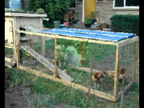 Where to buy used chicken coops for sale safe site online for Cheap chicken pens for sale