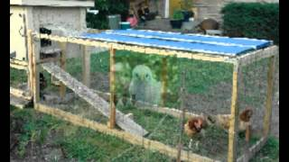 Where To Buy Used Chicken Coops For Sale| Safe Site Online To Buy Used Chicken Coops For Sale
