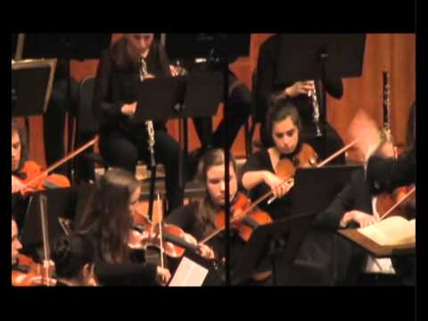 """MYSO CHAMBER ORCHESTRA -   Beethoven III Symphony """"Eroica"""" 17 May 2014"""