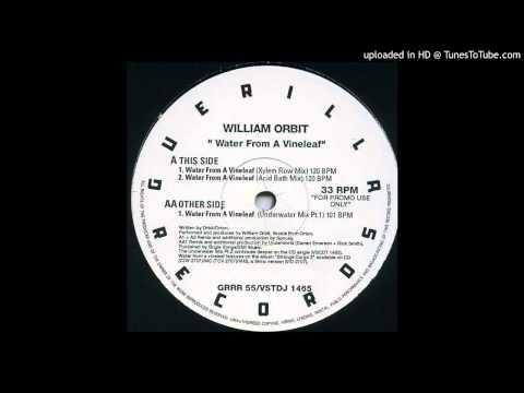 William Orbit~Water From A Vine Leaf [Underwater Mix Part 1] mp3
