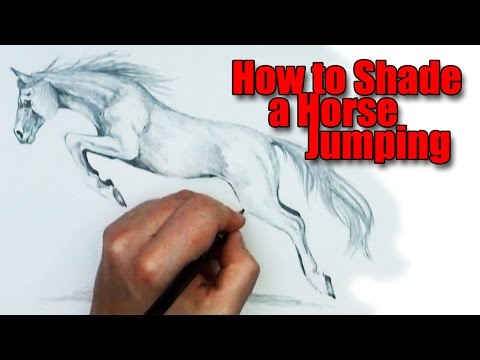 How to shade a horse jumping plus finding a mentor