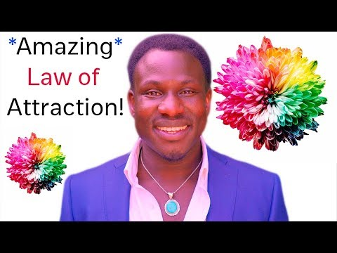 Change Your Vibes & Change Your Reality - Law of Attraction! (Spectacular!)
