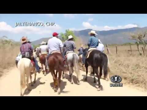 Programa Bridón Jaltenango, CHP