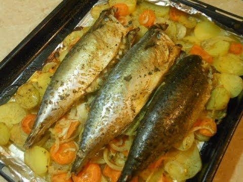 Как приготовить тунца желтохвостого