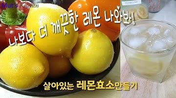 상큼한 레몬 효소 만드는 법, 레몬 깨끗이 닦아서 사용하는 방법~!🍋