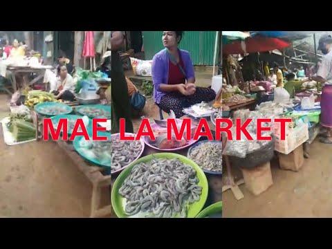 Karen Singer Honey Hser Exploring (Mae La Market)