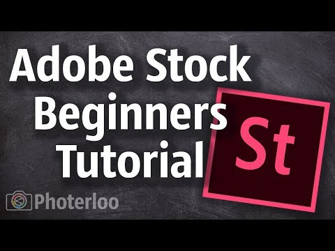 Adobe Stock Contributor Tutorial and Tips for Beginners