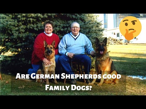 are-german-shepherds-good-family-dogs?