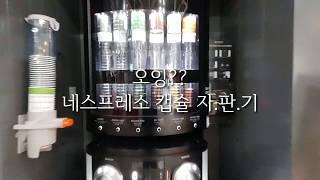 네스프레소 캡슐 자판기 사용기