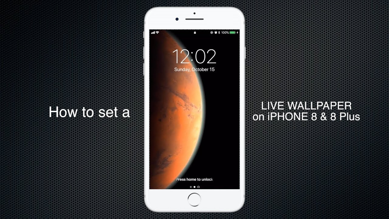 How to set Live wallpaper on iPhone 8, 8 plus, 7, 7 plus, 6S & 6S plus - YouTube