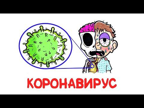 Коронавирус Vs организм [AsapSCIENCE]
