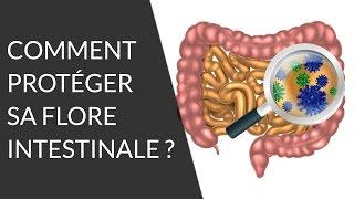 Quels sont les aliments bons pour notre flore intestinale ? - Question Nutrition