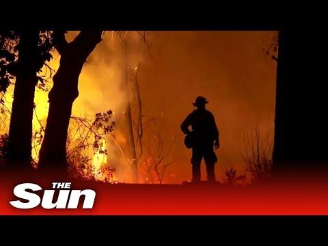 Wildfires destroy US west coast as half a million evacuate Oregon