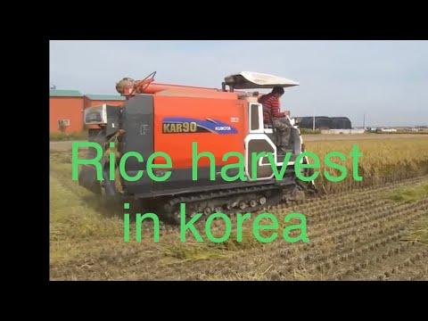 rice cutting machine धान काटने मेसिन