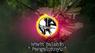 Download Mp3 Lagu Dayak Wiwit Balabih - Pangaloknyu