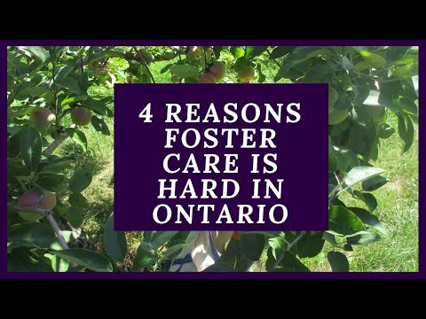 4 Reasons Foster Care Is Hard In Ontario Canada