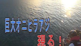 【超巨大魚】沖縄の海のギャング!オニヒラアジを追え!1【大物】 thumbnail