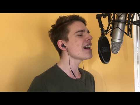 Sia - Chandelier (Cover by Niklas Felgitscher)