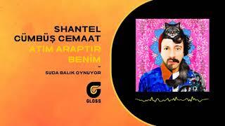 Shantel & Cümbüş Cemaat - Atım Araptır Benim (Suda Balık Oynuyor)