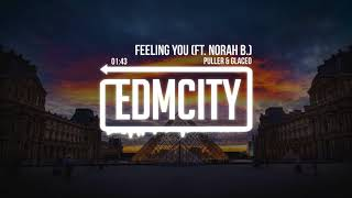 PULLER &amp Glaceo - Feeling You (ft. Norah B.)