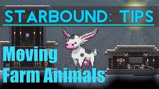 Starbound Tips: Moving Farm Animals