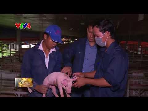 VTV News 18h - 12/05/2018