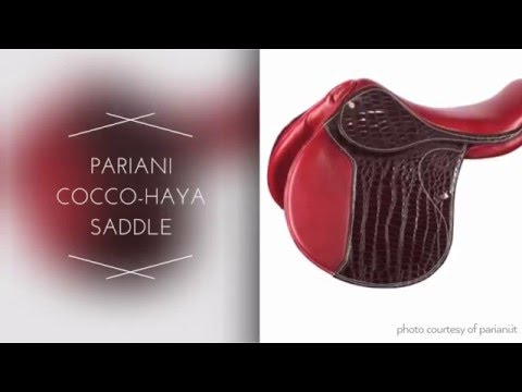 Saddles that Are Also Works of Art