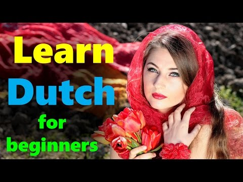 Learn Dutch phrases for beginners while you sleep, in Hindi