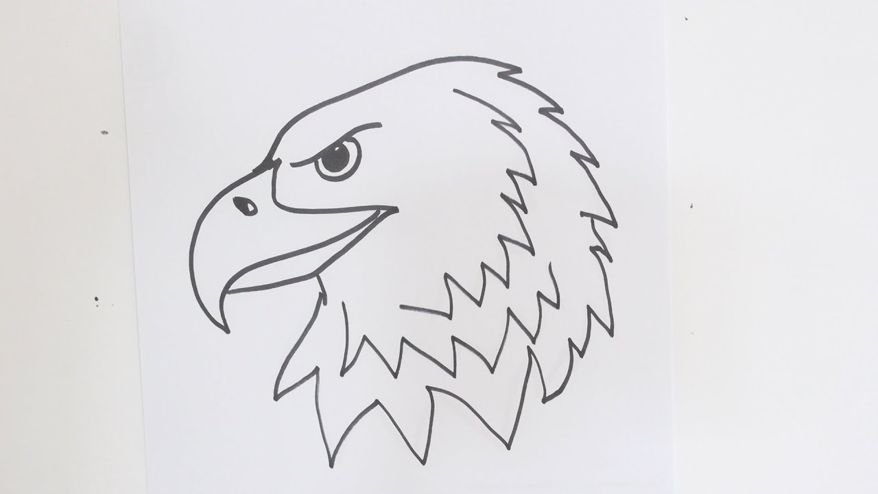 how to draw an eagles head youtube