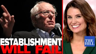 Krystal Ball: Why establishment scramble to stop Bernie will fail