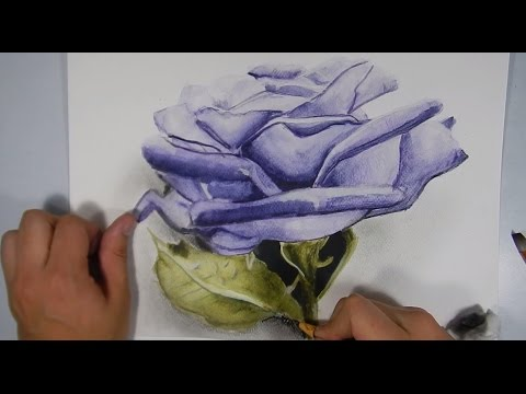 Como Dibujar Flores Realistas Drawing Flowers Youtube