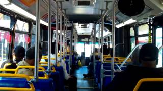 Bee-Line Bus Neoplan USA AN460 Artic Route 1W Bus Ride:Part 2