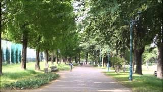 150506_彩の森入間公園と稲荷山公園