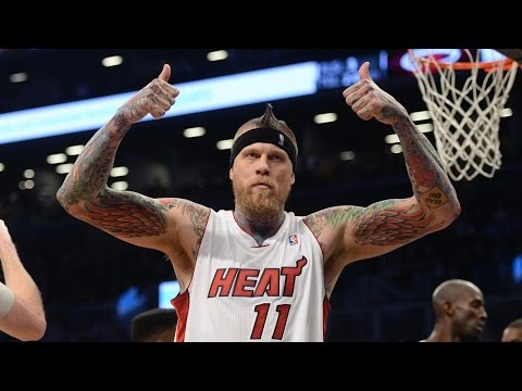 Chris Andersen Heat 2015 Season Highlights
