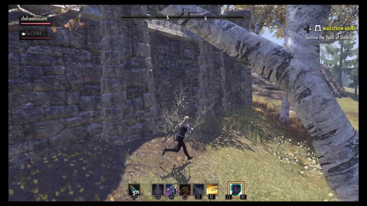 Eso Player Housing How To Get Inside The Rift's House