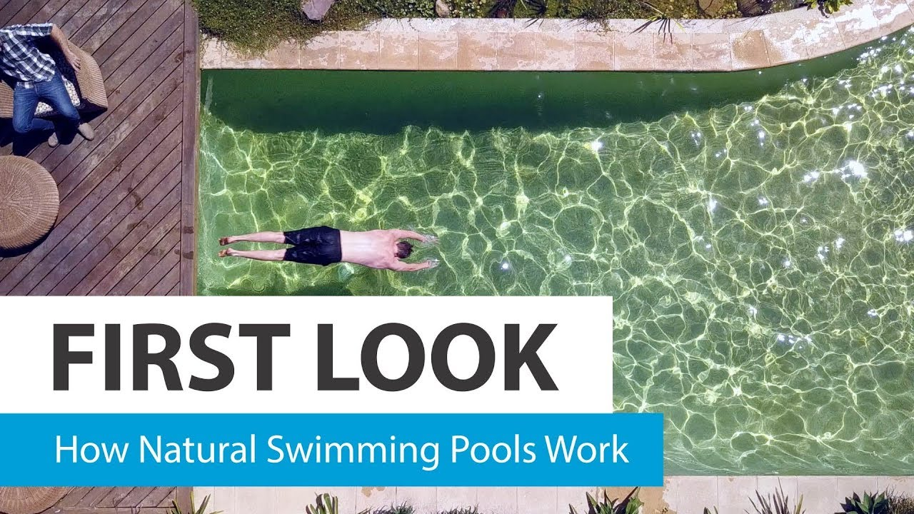How Natural Swimming Pools Work Choice Youtube