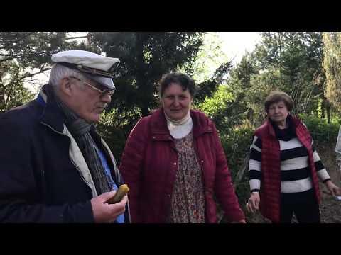 Родовое поместье Ханиных – хранение солений по способу из книги Владимира Мегре