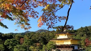 Autumn Holiday in Japan 2015 (Tokyo, Kyoto, Osaka, Mount Fuji, Shirakawa-go)