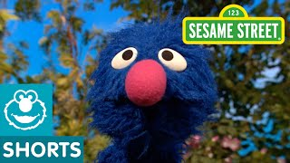 Sesame Street: Grover Jumps For Joy