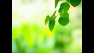 クラウン少女合唱団HP△http://crown-gc.com/ Arrietty's Song http://ww...